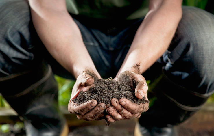 How to get off on the right foot with gardening for Everything about soil